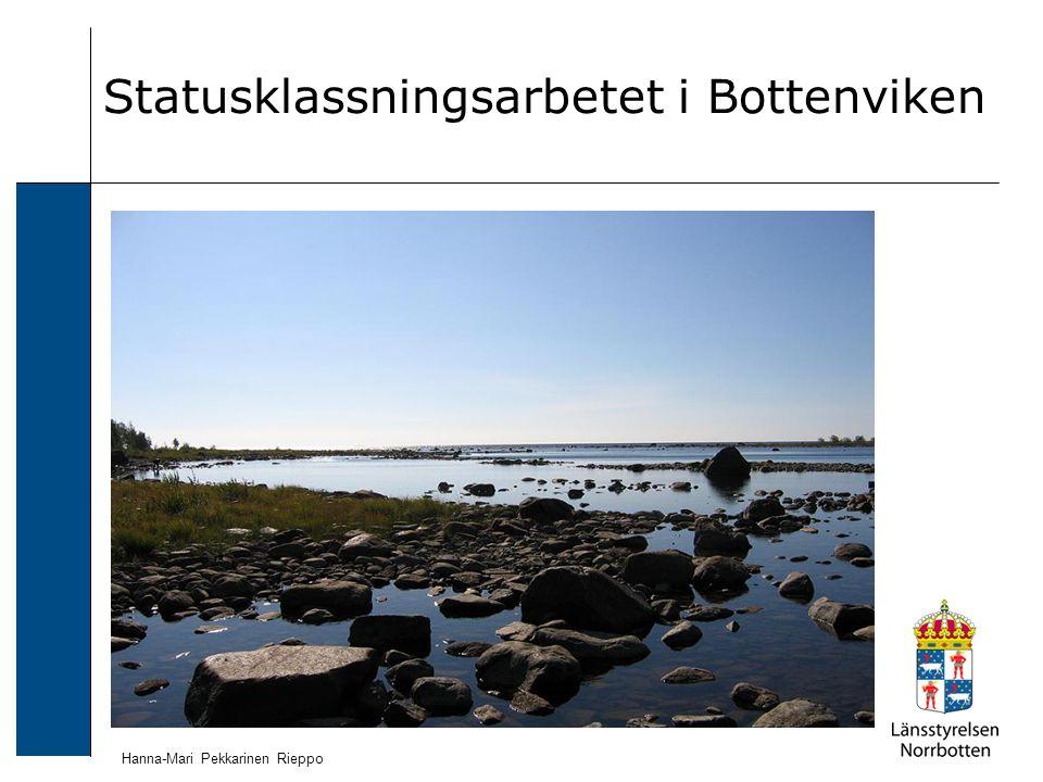 Statusklassningsarbetet i Bottenviken