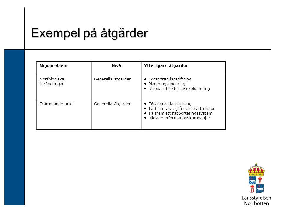 Exempel på åtgärder Morfologiska förändringar: