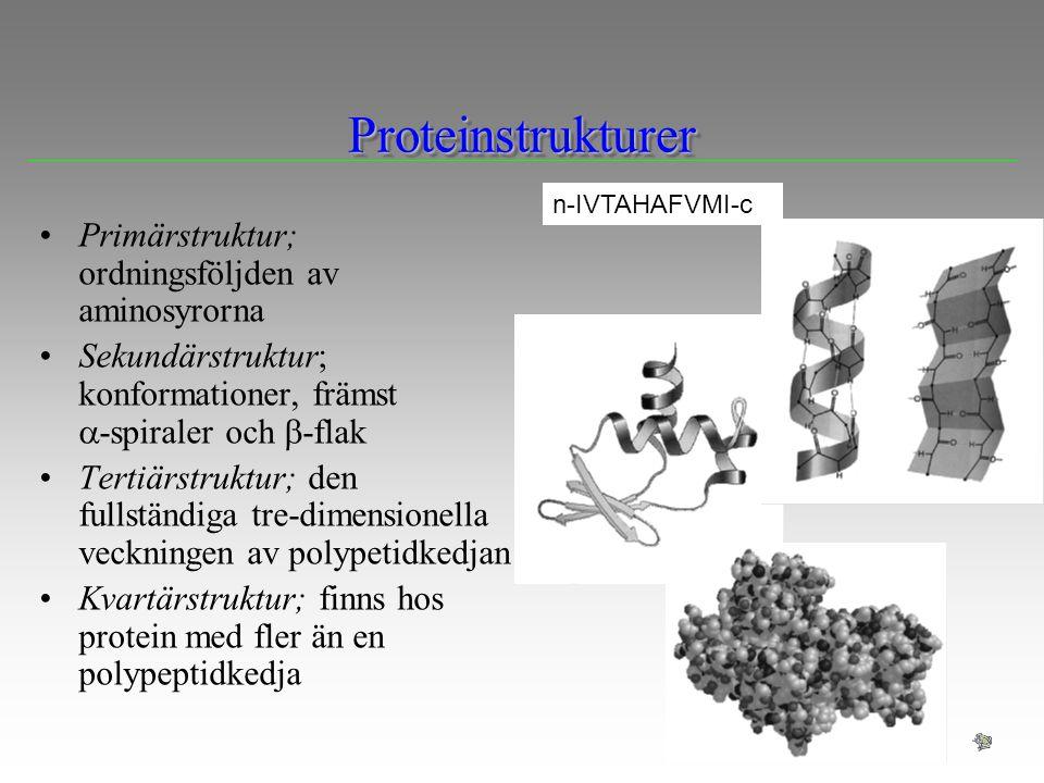 Proteinstrukturer Primärstruktur; ordningsföljden av aminosyrorna