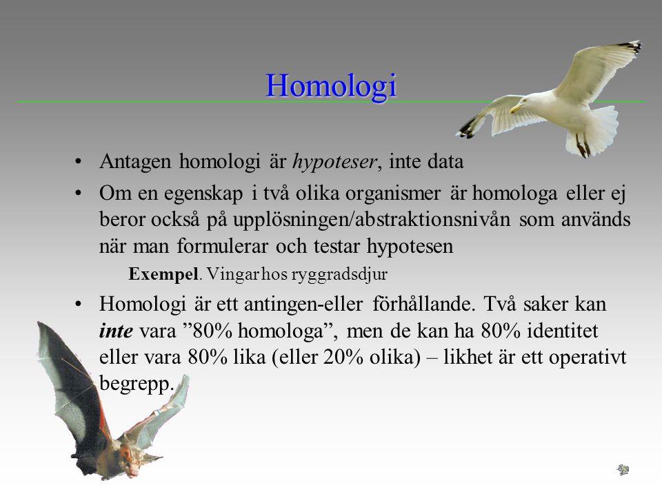 Homologi Antagen homologi är hypoteser, inte data