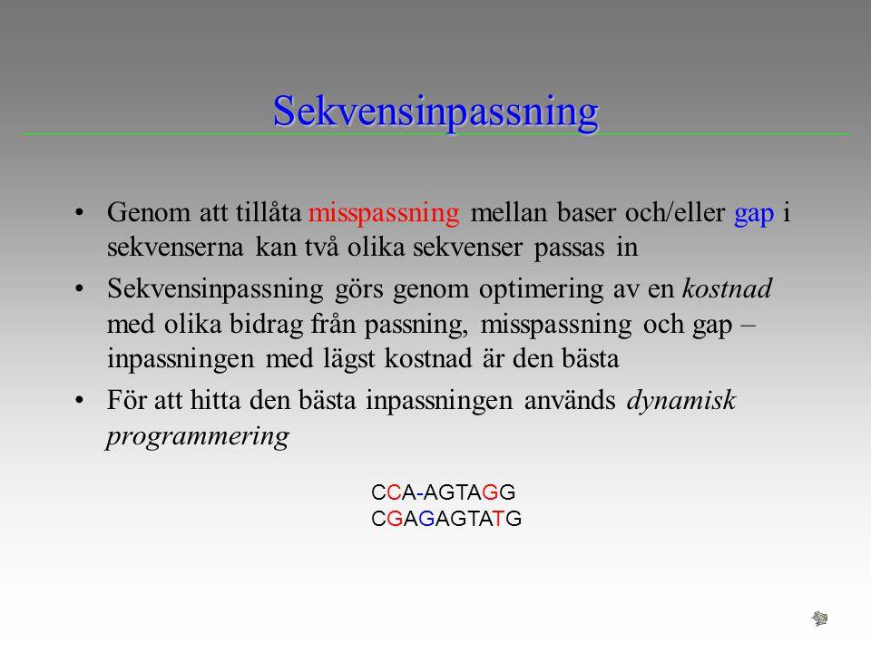 Sekvensinpassning Genom att tillåta misspassning mellan baser och/eller gap i sekvenserna kan två olika sekvenser passas in.