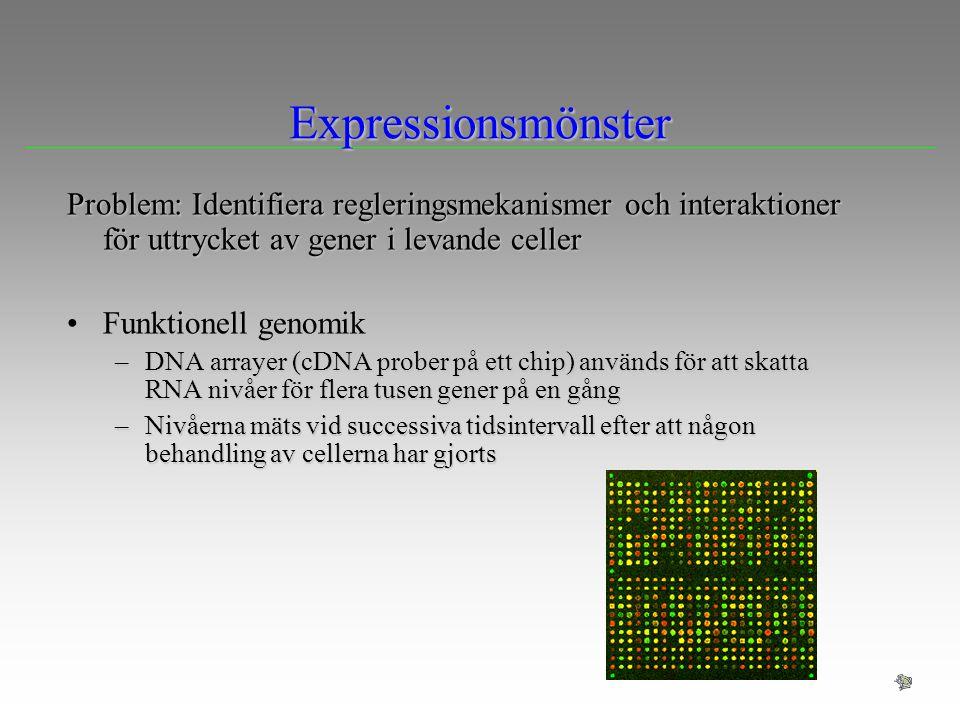 Expressionsmönster Problem: Identifiera regleringsmekanismer och interaktioner för uttrycket av gener i levande celler.