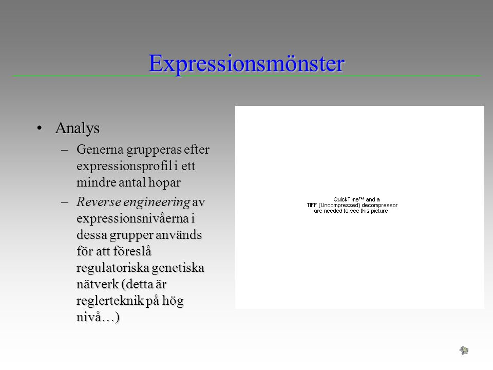 Expressionsmönster Analys