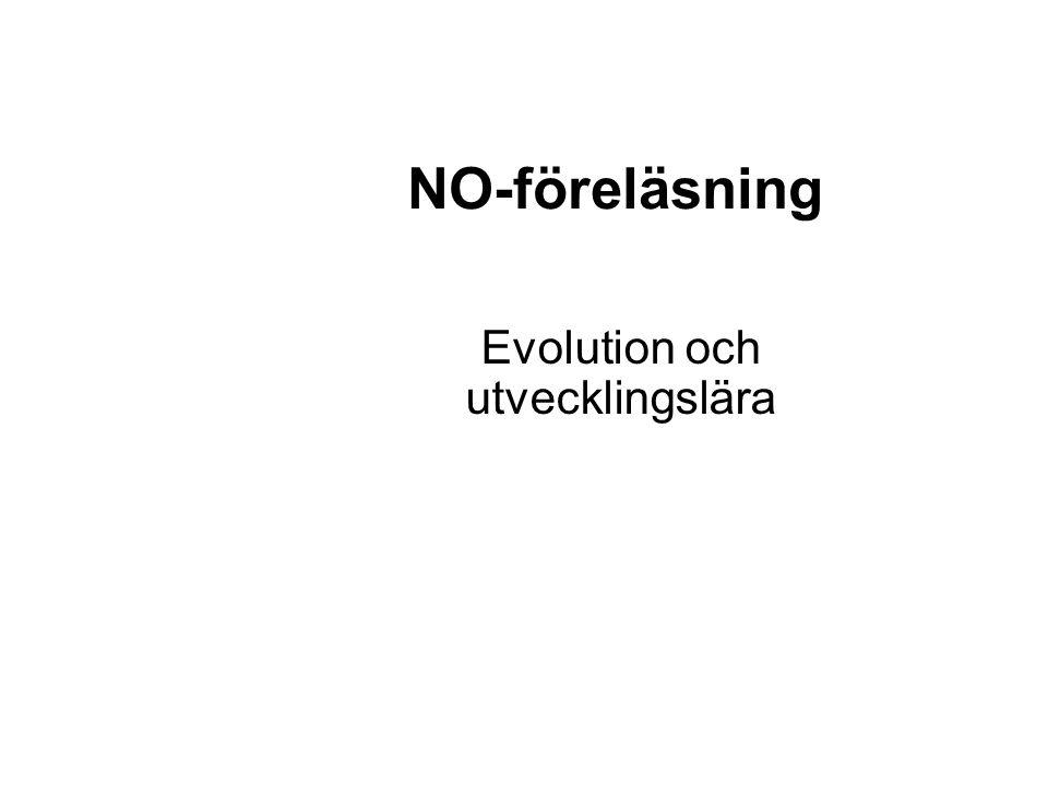 Evolution och utvecklingslära