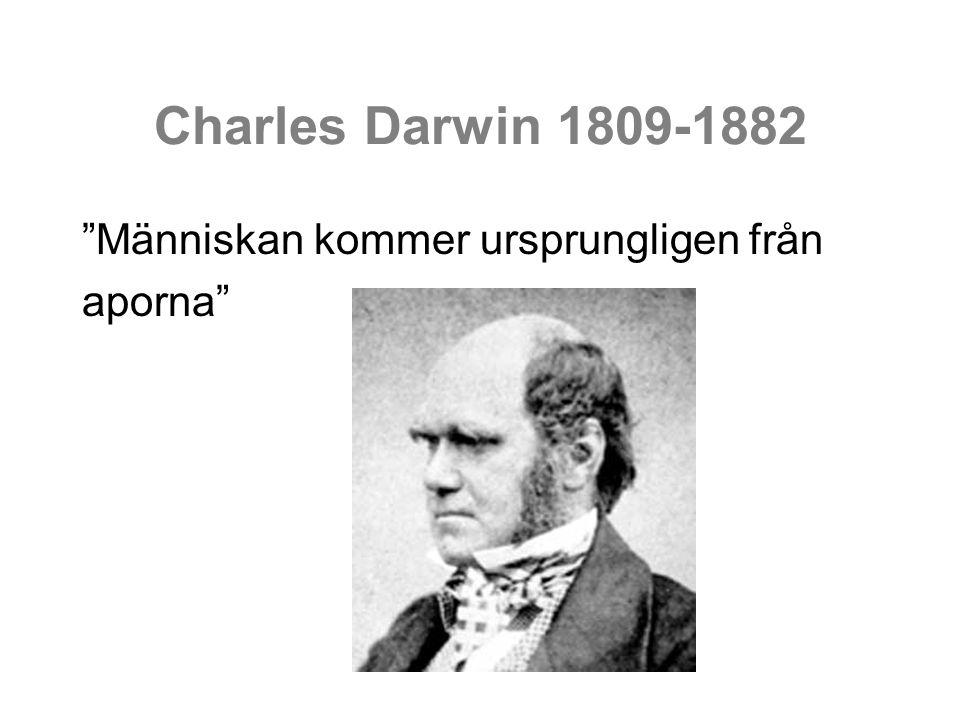 Charles Darwin 1809-1882 Människan kommer ursprungligen från aporna