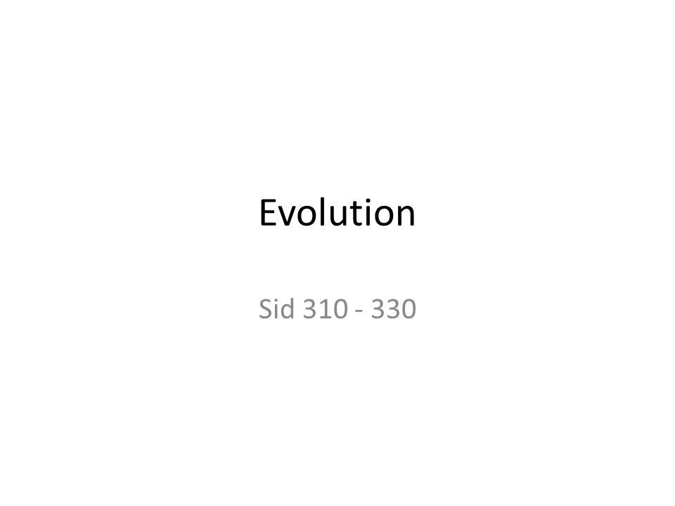 Evolution Sid 310 - 330