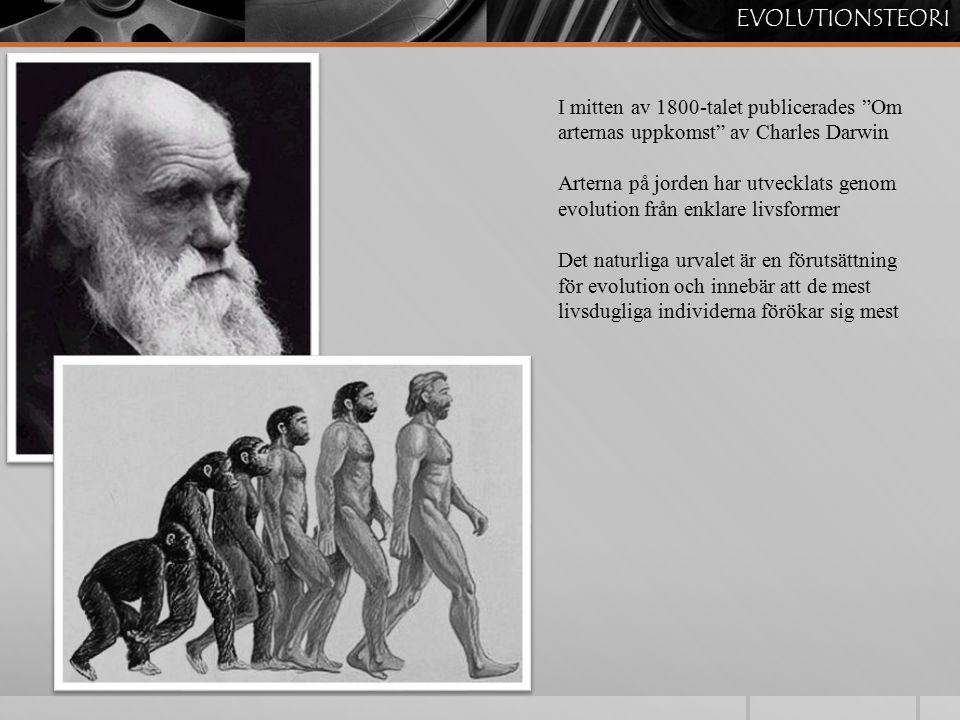 EVOLUTIONSTEORI I mitten av 1800-talet publicerades Om arternas uppkomst av Charles Darwin.