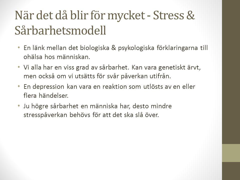 När det då blir för mycket - Stress & Sårbarhetsmodell