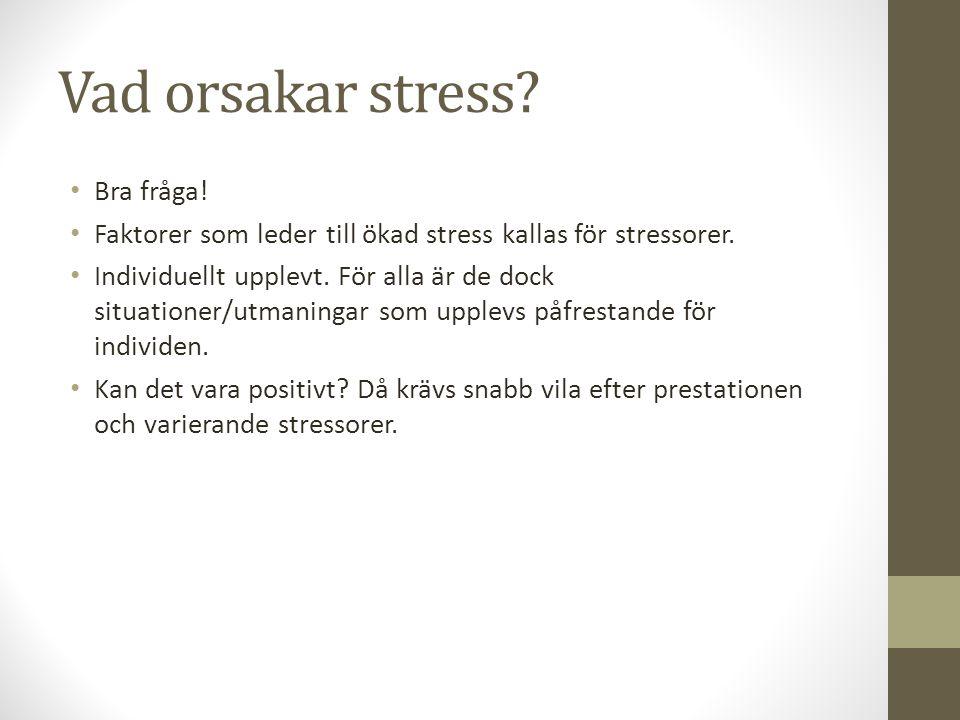 Vad orsakar stress Bra fråga!