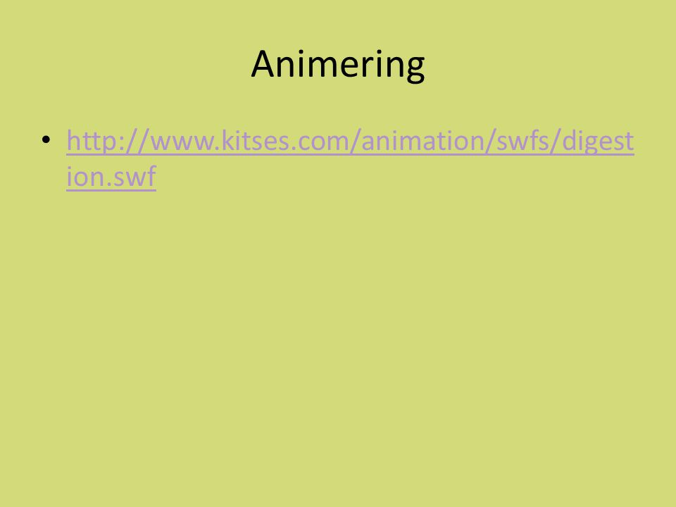 Animering http://www.kitses.com/animation/swfs/digestion.swf