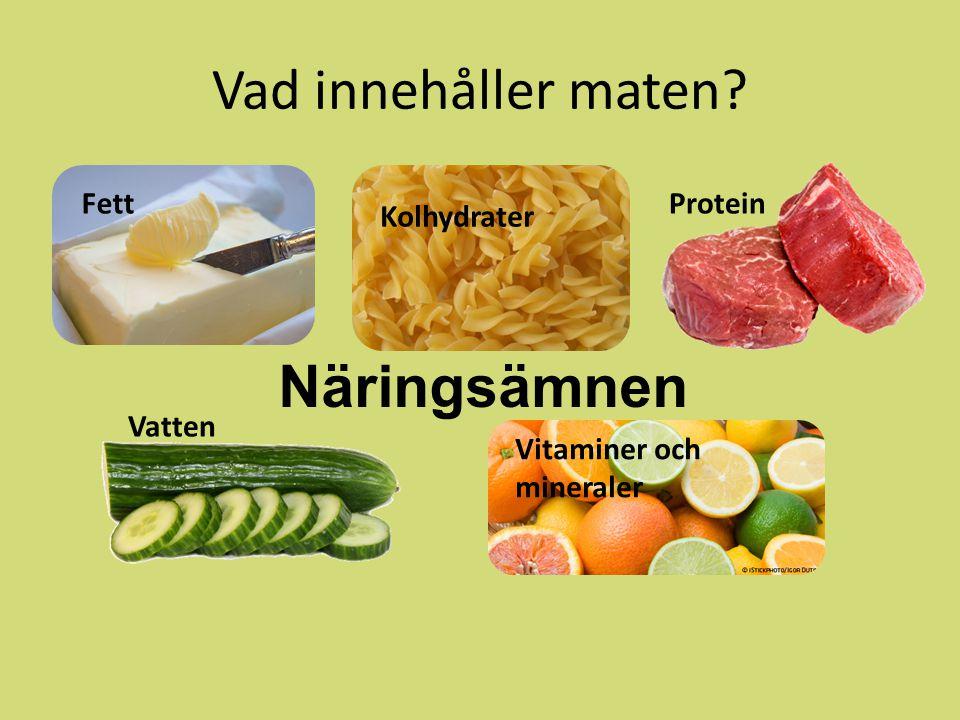 Vad innehåller maten Näringsämnen Fett Protein Kolhydrater Vatten