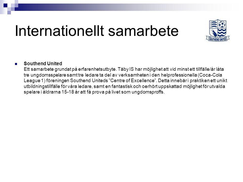 Internationellt samarbete