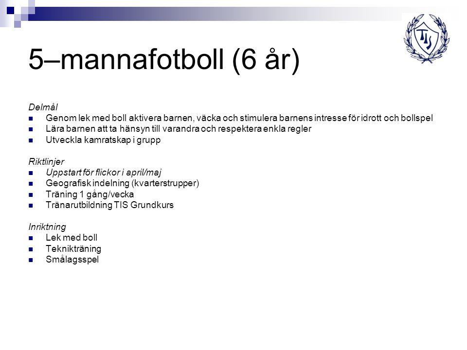 5–mannafotboll (6 år) Delmål