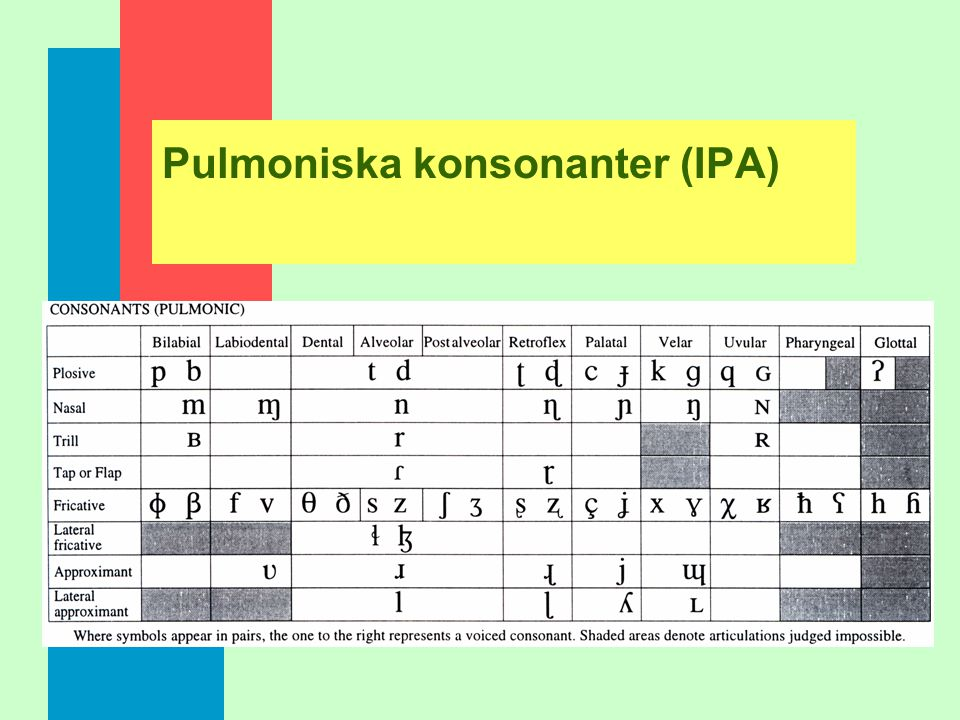 Pulmoniska konsonanter (IPA)