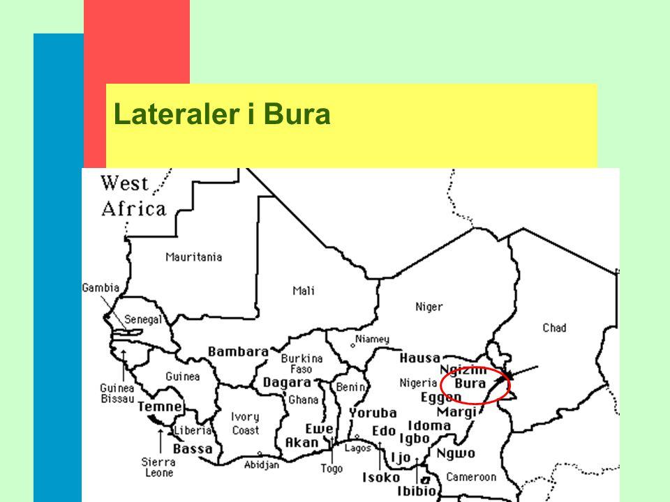 Lateraler i Bura