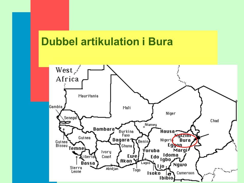 Dubbel artikulation i Bura