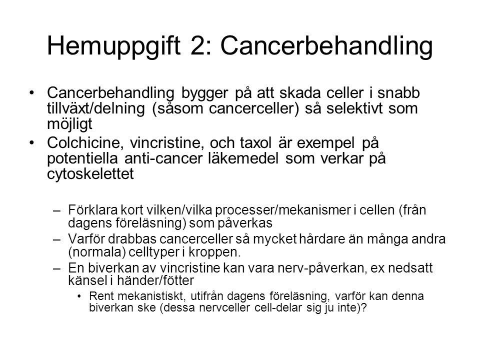 Hemuppgift 2: Cancerbehandling