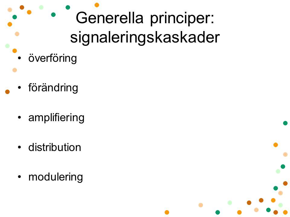 Generella principer: signaleringskaskader