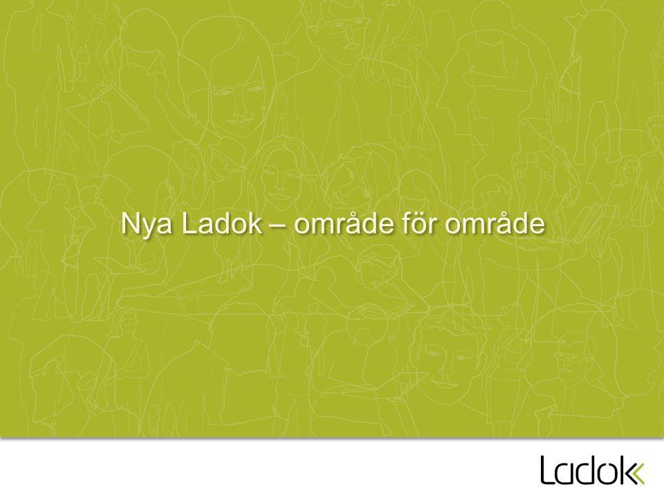 Nya Ladok – område för område