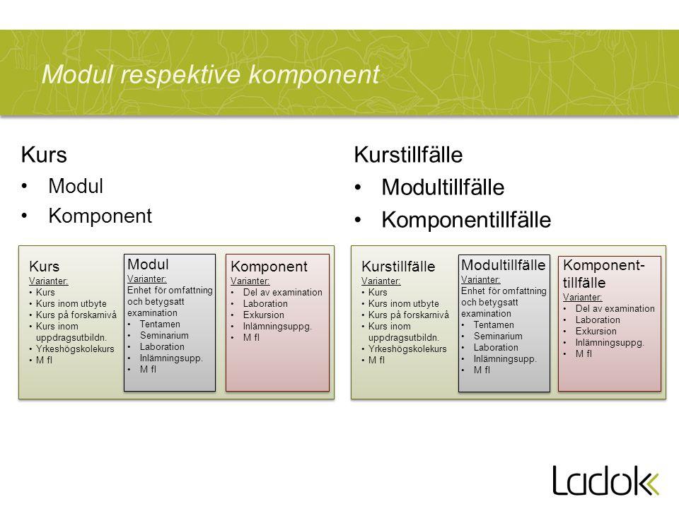 Modul respektive komponent