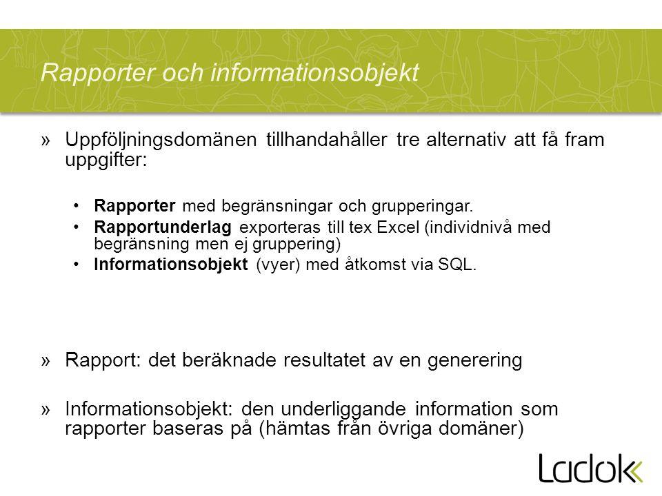 Rapporter och informationsobjekt