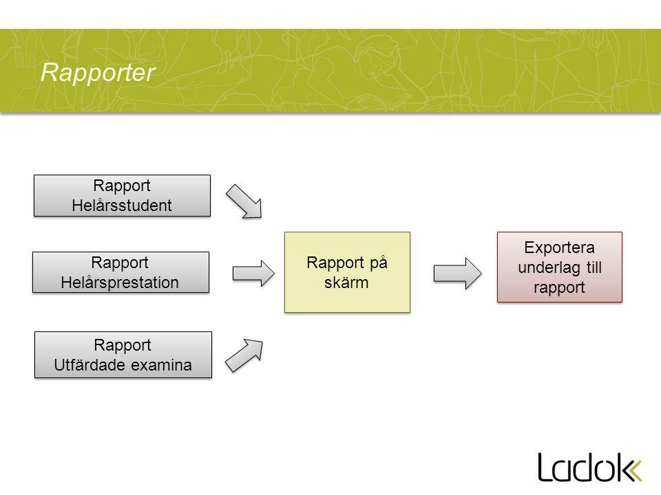 Rapporter Rapport Helårsstudent Exportera underlag till rapport