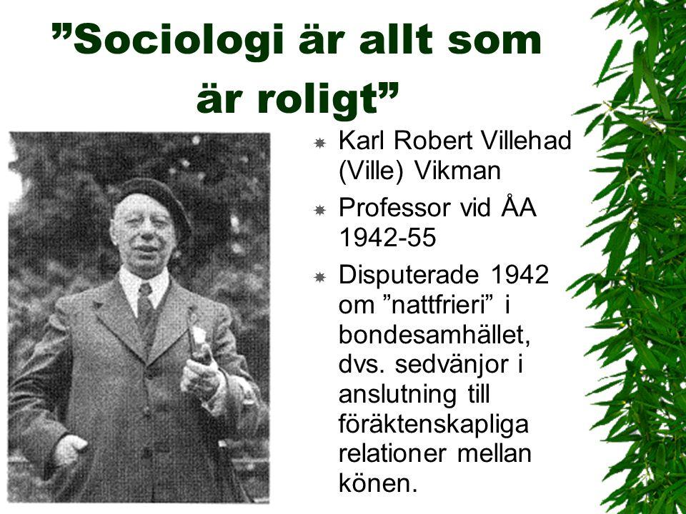 Sociologi är allt som är roligt