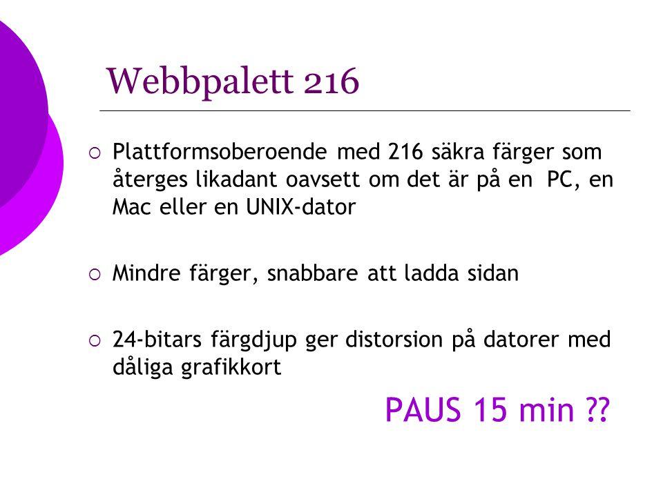 Webbpalett 216 Plattformsoberoende med 216 säkra färger som återges likadant oavsett om det är på en PC, en Mac eller en UNIX-dator.