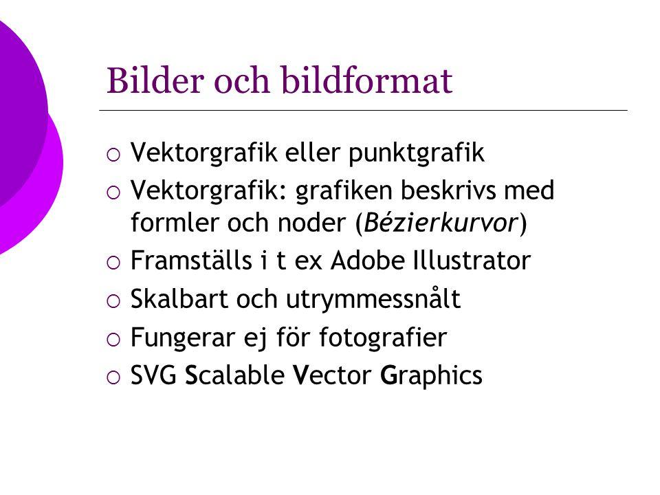 Bilder och bildformat Vektorgrafik eller punktgrafik