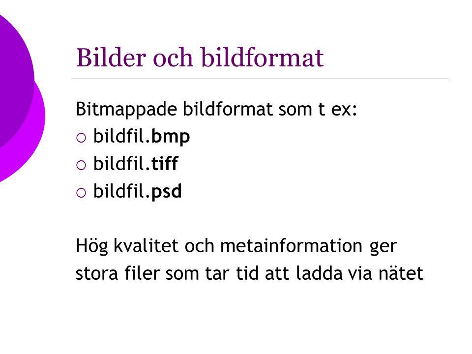 Bilder och bildformat Bitmappade bildformat som t ex: bildfil.bmp