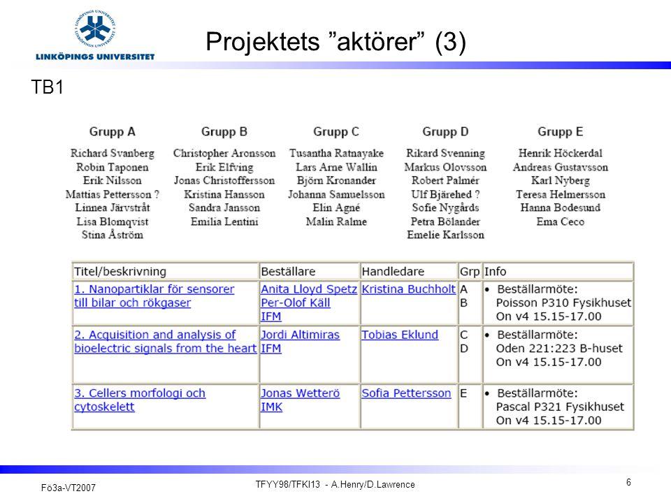 Projektets aktörer (3)
