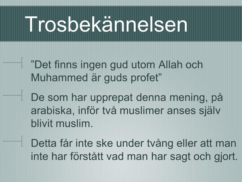 Trosbekännelsen Det finns ingen gud utom Allah och Muhammed är guds profet