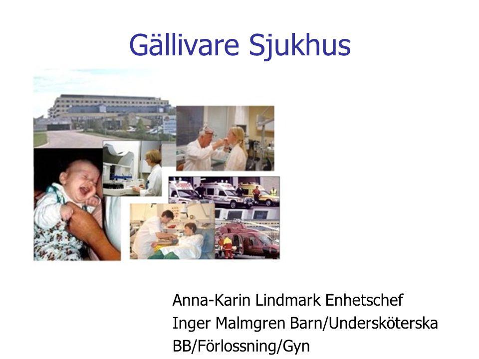 Gällivare Sjukhus Anna-Karin Lindmark Enhetschef