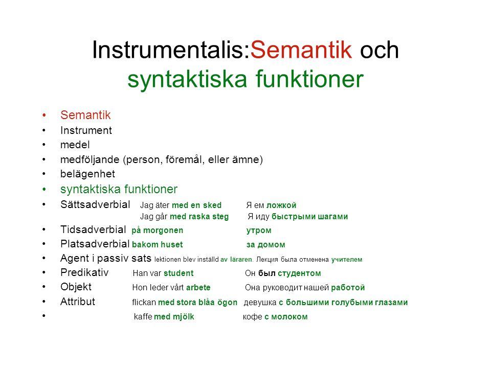Instrumentalis:Semantik och syntaktiska funktioner