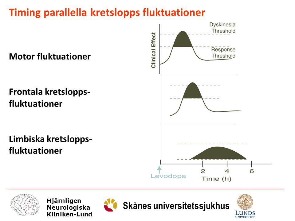Timing parallella kretslopps fluktuationer