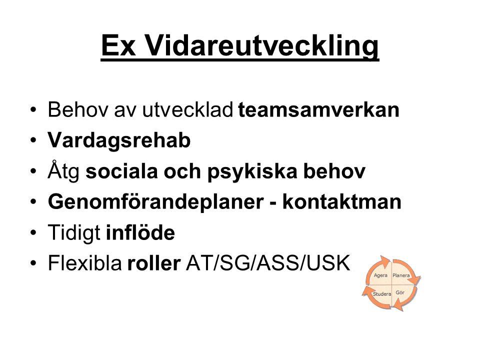 Ex Vidareutveckling Behov av utvecklad teamsamverkan Vardagsrehab