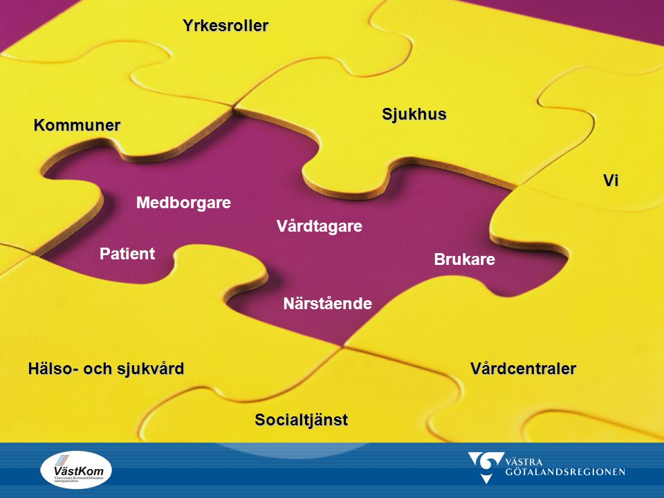 Sjukhus Kommuner Medborgare Vårdtagare Patient Brukare Närstående