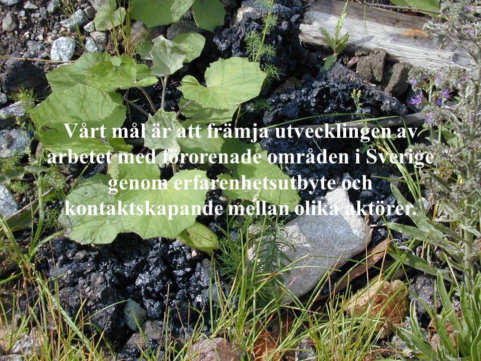 Vårt mål är att främja utvecklingen av arbetet med förorenade områden i Sverige genom erfarenhetsutbyte och kontaktskapande mellan olika aktörer.
