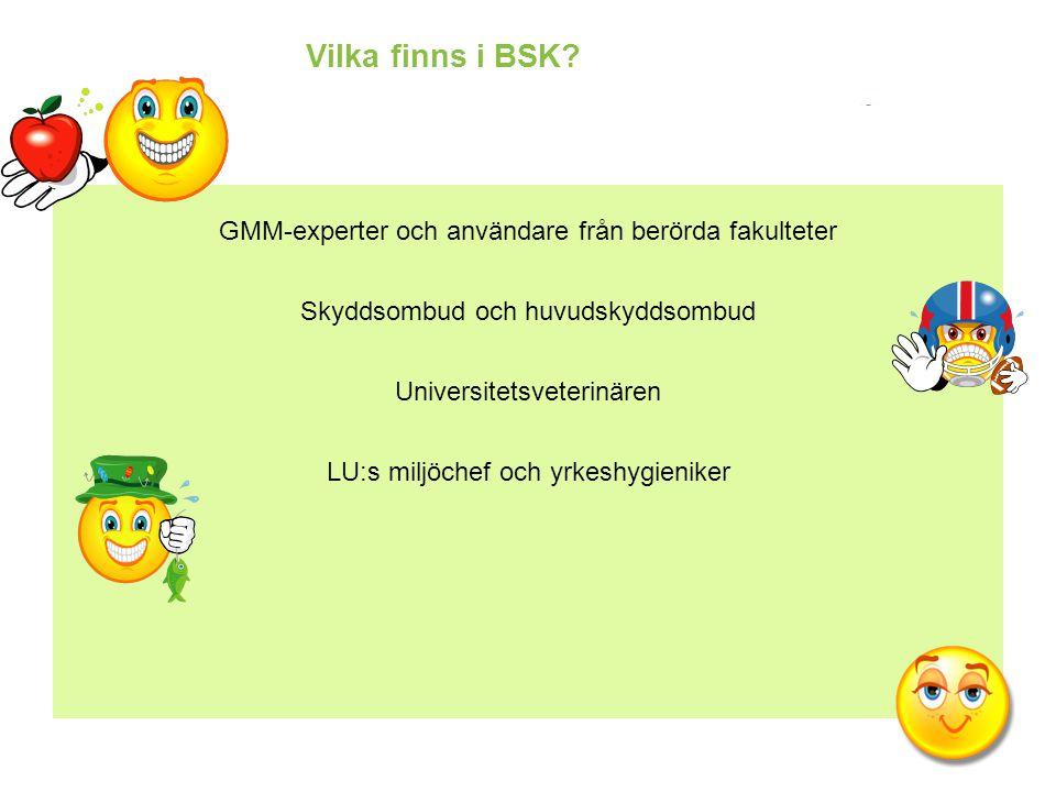 Vilka finns i BSK GMM-experter och användare från berörda fakulteter