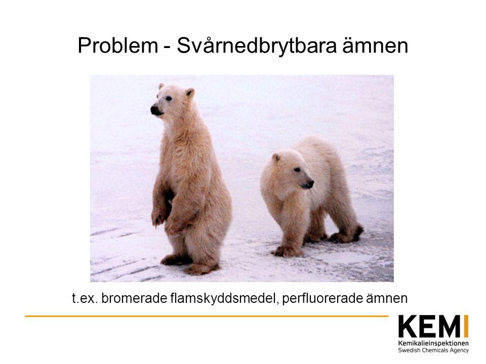 Problem - Svårnedbrytbara ämnen
