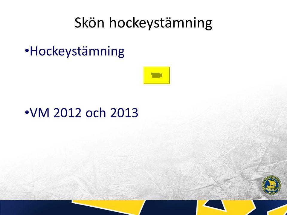 Skön hockeystämning Hockeystämning VM 2012 och 2013