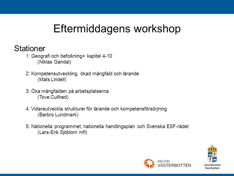 Eftermiddagens workshop