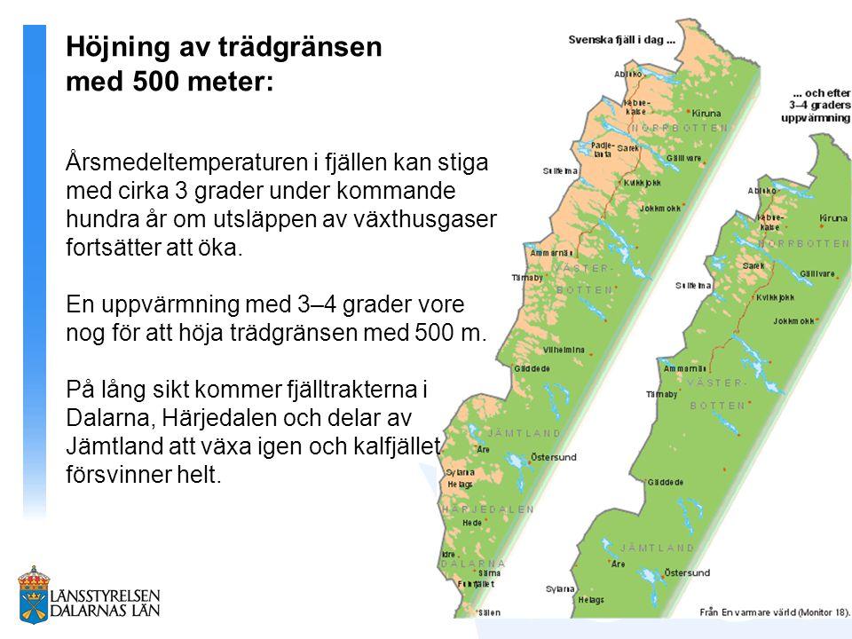 Höjning av trädgränsen med 500 meter: