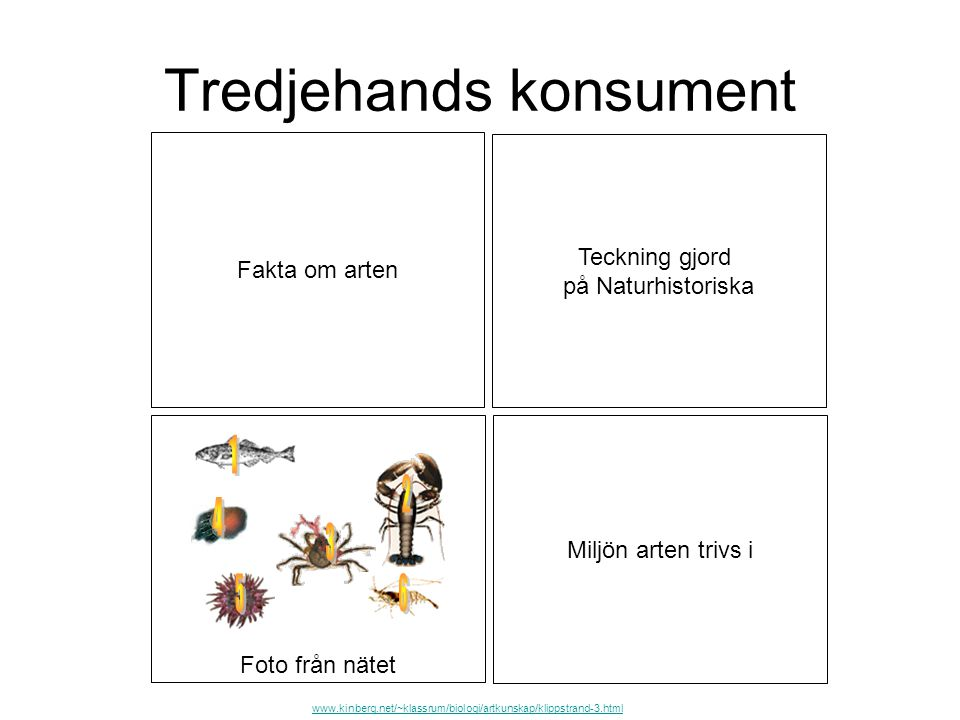 Tredjehands konsument