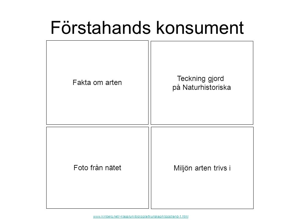 Förstahands konsument