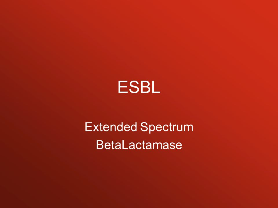 Extended Spectrum BetaLactamase