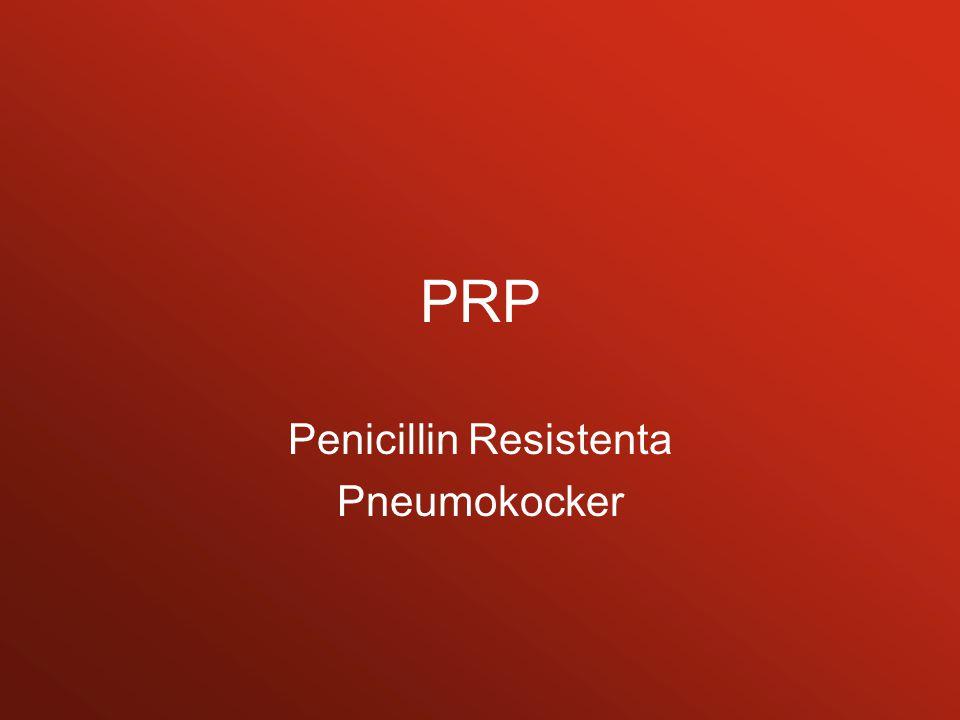 Penicillin Resistenta Pneumokocker