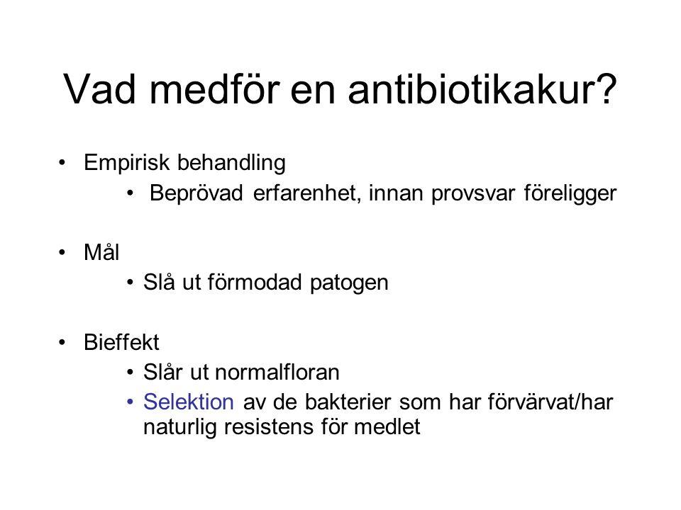 Vad medför en antibiotikakur