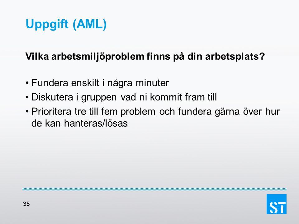 Uppgift (AML) Vilka arbetsmiljöproblem finns på din arbetsplats