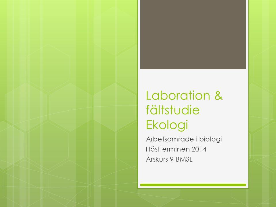 Laboration & fältstudie Ekologi